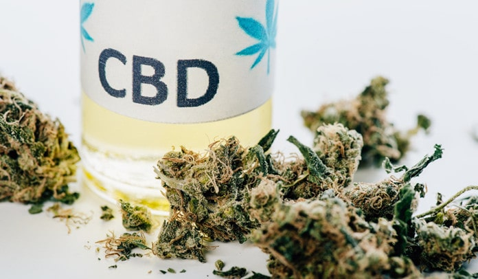 facts about special sauce cbd
